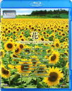 [Blu-ray] V-music 花〜Scenery with Flowers〜