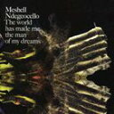 輸入盤 MESHELL NDEGEOCELLO / WORLD HAS MADE ME THE MAN OF MY DREAMS CD