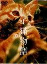 [DVD] 子猫物語