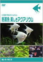 [DVD] トロピカルフィッシュ熱帯魚 美しきアクアリウム飼い方・育て方