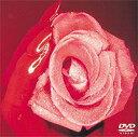 """SMAP/SMAP 010""""TEN"""" DVD"""