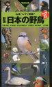 日本の野鳥 写真検索