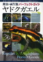 ヤドクガエル 飼育+繁殖+種類解説+ビバリウム+植物+Q&A etc…