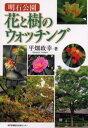 明石公園花と樹のウォッチング
