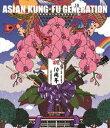 ASIAN KUNG-FU GENERATION/映像作品集10巻 デビュー10周年記念ライブ 20