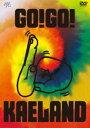 ショッピングKAELAND 木村カエラ/KAELA presents GO!GO! KAELAND 2014 -10years anniversary-(初回限定版)(DVD)