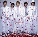 日本流行音乐 - 東方神起 / Beautiful you/千年恋歌(CD+DVD/ジャケットC) [CD]