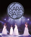KARA/KARA THE 3rd JAPAN TOUR 2014 KARASIA(Blu-ray)