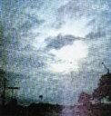 日本流行音乐 - ワイルドマイルド/サイクル(CD)
