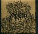 【輸入盤】IMPIETY インパイアティー/PARAMOUNT EVIL(CD)