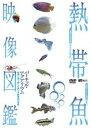 【メール便送料無料】熱帯魚映像図鑑 バーチャル・アクアリウム 映像と音で愉しむ美しき熱帯魚の世界 (DVD)【2010/4/1】