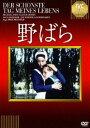 野ばら(DVD) ◆20%OFF!