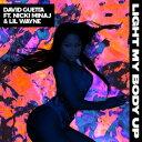 欧洲电子音乐 - 輸入盤 DAVID GUETTA / LIGHT MY BODY UP (FEATURING NICKI MINAJ & LIL WAYNE) [CDS]