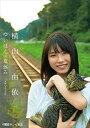 横山由依/「ゆいはんの夏休み」〜京都いろどり日記〜(DVD)