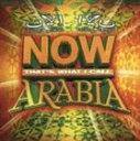 《送料無料》(オムニバス) NOW アラビア(CD)