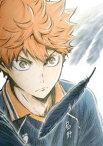 ハイキュー!! 烏野高校 VS 白鳥沢学園高校 Vol.1 Blu-ray [Blu-ray]