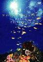 Marine Paradise Vol.9 〜パラオ/フィリピン編〜(DVD) ◆20%OFF!