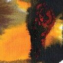 Other - 輸入盤 POLAR BEAR / SAME AS YOU [CD]
