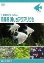 トロピカルフィッシュ熱帯魚 美しきアクアリウム飼い方・育て方(DVD)
