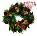 Pop JAPANizu - ヴィドール / 舞夢〜マイム〜 クリスマスVer(通常盤B) [CD]