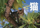 カレンダー '14 猫 WorldCat
