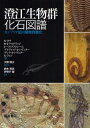 澄江生物群化石図譜 カンブリア紀の爆発的進化