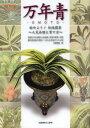 万年青 始めよう!伝統園芸 人気品種と育て方