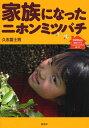 家族になったニホンミツバチ DVD付き「動画で見るニホンミツバチの飼い方」