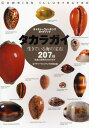 タカラガイ 生きている海の宝石 日本と世界のタカラガイ207種