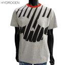 ショッピングハイドロゲン ハイドロゲン HYDROGEN メンズ Tシャツ 半袖 トップス ビックスカル入りサイバープリントTシャツ グレー 色違い有 225618 015 81S (R20520)