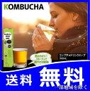 【送料無料(一部地域を除く)】『コンブチャドリンクハーブ 500ml - Kombucha Drink Herb -』菌活  次世代の酵素ドリンク 紅茶キノコ ...