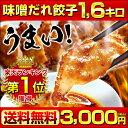 【送料無料】注文殺到中!餃子専門店イチローの神戸味噌だれ餃子1.6キロ(100個)+特