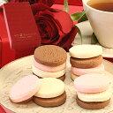 バレンタイン義理チョコとろける生チョコクッキー9枚入 赤BO...