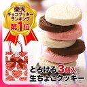 とろける生チョコクッキー3個入【プチギフト ギフト クッキー チョコレート 生チョコ バレンタイン ホワイトデー 】【あす楽対応】