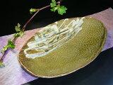 ?釉皿最喜欢的颜色,以补充菜是白色的,生动的绿色,白色釉皿出窍吗椭圆形碟[緑が鮮やかな織部釉皿白がお料理を引き立てる白釉皿どちらの色合いがお好み♪…?だ皿]