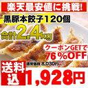 餃子/セット【累計5,000万個完売】本餃子と黒豚餃子!合計120個セット【生餃子】【1】