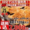 【2016年グルメ大賞受賞!】餃子 送料無料 【5000万個完売!】肉汁たっぷり黒餃子!合