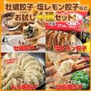 【送料無料/お試し】広島好きのお父さんへ広島牡蠣・レモン・もち豚・広島菜が入ったご当地餃子20個セット