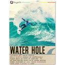 【送料無料】 WATER HOLE サーフィン DVD 新発売 ケリー 五十嵐カノア パーコ ジョディ