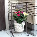 (送料無料) スイングポーチ コルダーナローズ ミニ薔薇の寄せ植え / ミニバラ・鉢植え・コルダナ・母の日・ギフト・プレゼント