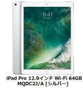 Apple iPad Pro 12.9インチ Wi-Fi 64GB MQDC2J/A [シ