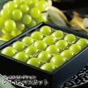 シャインマスカット ジュエルセレクション 岡山県産 特秀 5Lサイズ 20粒 送料無料 ギフト 葡萄 ぶどう ブドウ
