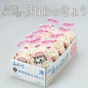 洗い 砂丘らっきょう 鳥取県産 JA鳥取いなば(福部産)秀品 Sサイズ 約10kg 送料無料
