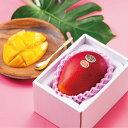 太陽のタマゴ 完熟マンゴー 太陽のたまご 宮崎県産 赤秀 2L 350g以上 1玉 ギフト 送料無料