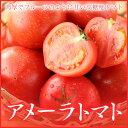 アメーラ 高糖度フルーツトマト 静岡県産 長野県産 秀品 L~2Sサイズ 約1kg ギフト 送料無料