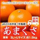 JAえひめ中央(中島産)『あまくさ』(紅まどんなの親品種) 青秀 3L〜Lサイズ(約1.5kg) 【送料無料】