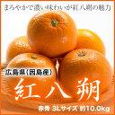 2月上旬より発送 広島県(因島産) 『紅八朔』赤秀 3Lサイズ (約10.0kg)