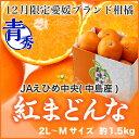 JAえひめ中央 (中島産)『紅まどんな』 青秀 L〜Mサイズ 8玉〜10玉(約1.5kg)【御歳暮 冬ギフト】