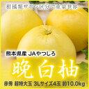 熊本県産 JAやつしろ 『晩白柚』 赤秀 超特大玉 3Lサイズ 4玉(約10.0kg)