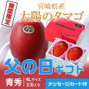 遅れてごめんね 父の日ギフト 太陽のタマゴ 宮崎県産 完熟マンゴー 青秀 4L 2玉 送料無料